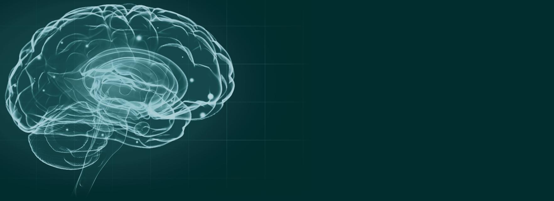 Por qué no hemos podido domesticar nuestra mente si le dedicamos tanto tiempo